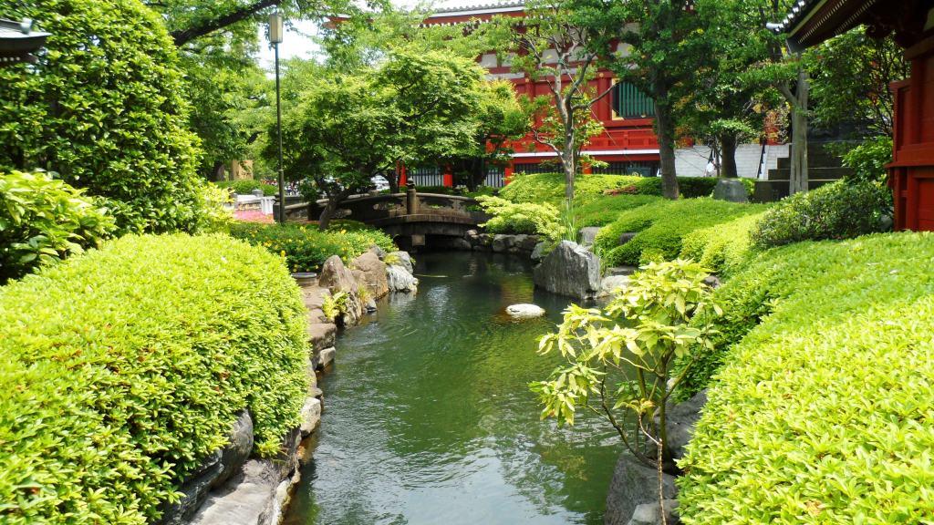 #moodboard #japon #voyage #mariage #tokyo #printemps #récit