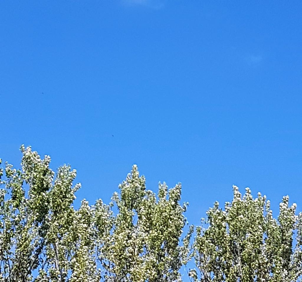 #ciel #provence #2021